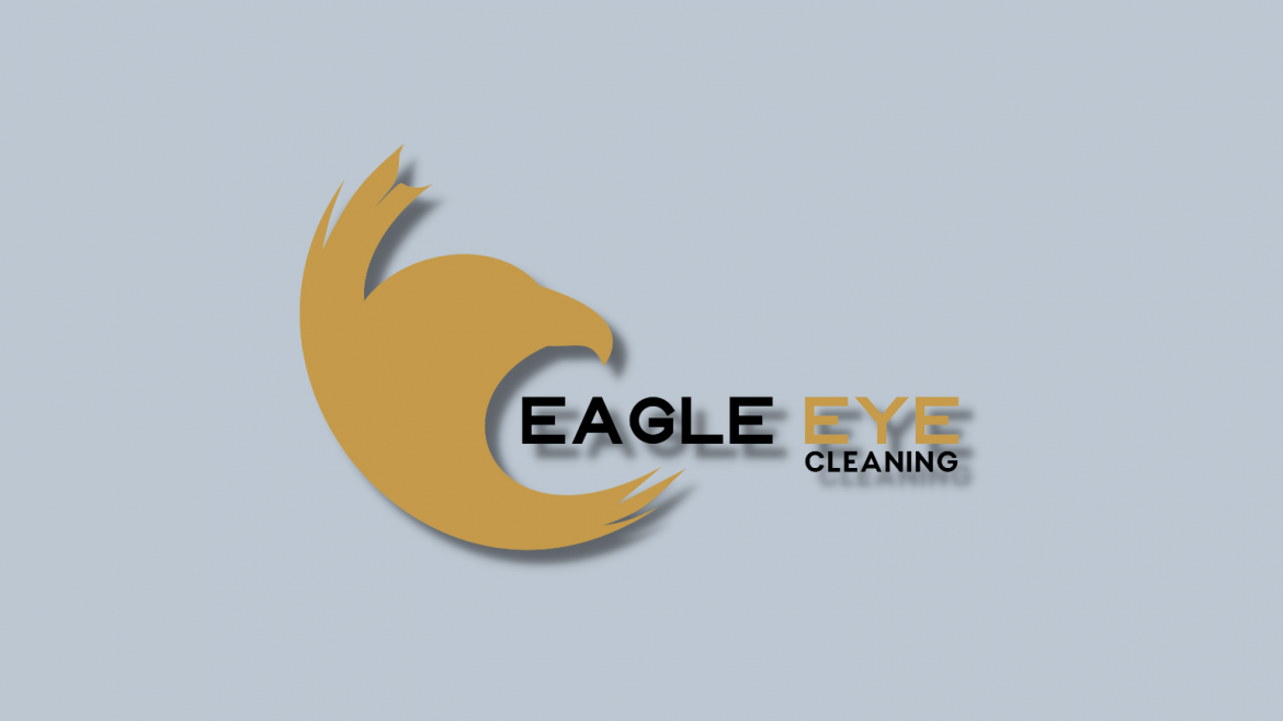 Cleaning service Logo designers